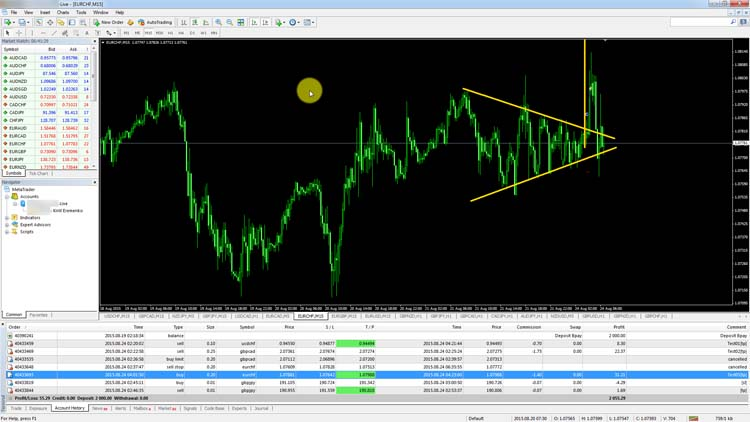 Live forex trading training