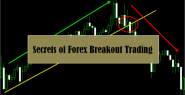 Forexboat algorithmic trading in forex