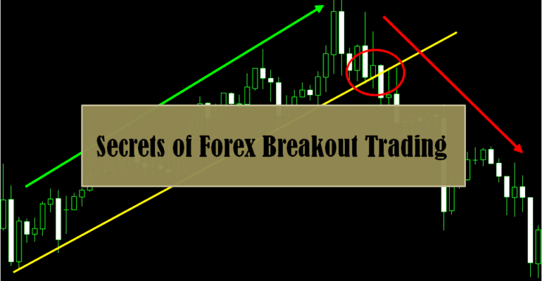 Forex trade secrets revealed