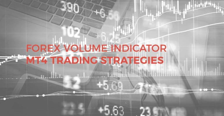Forex trading daily volume