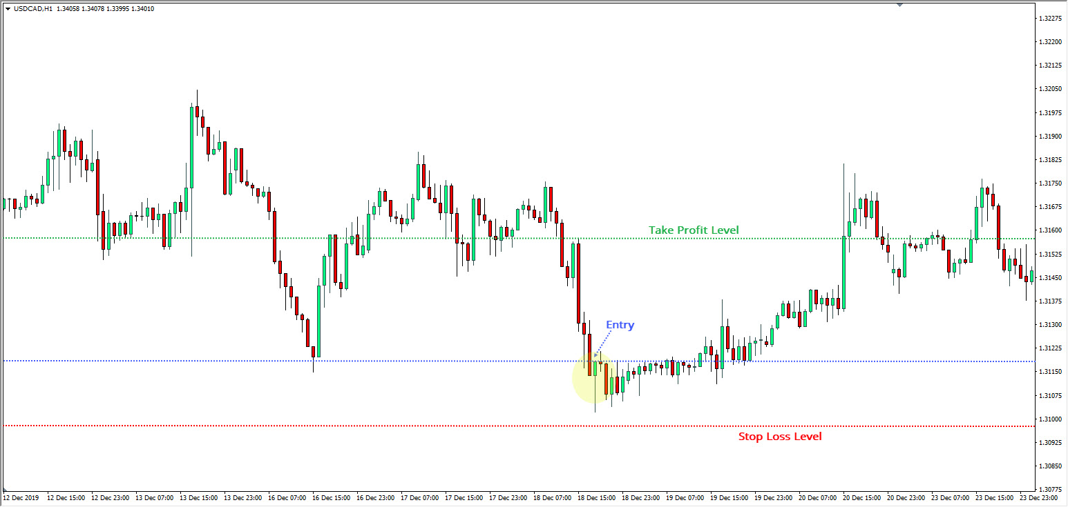 Hammer USDCAD Example