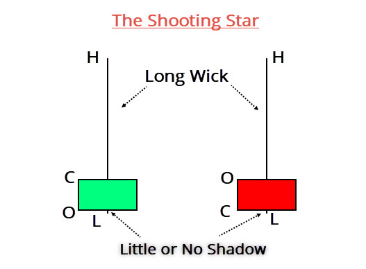 Shooting Star Anatomy
